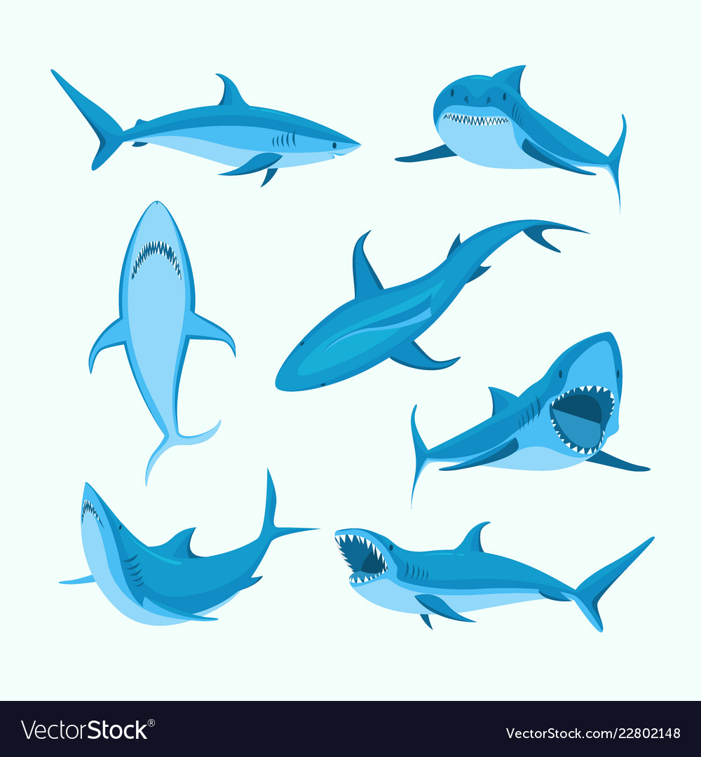 Cartoon blue characters shark sign icon set