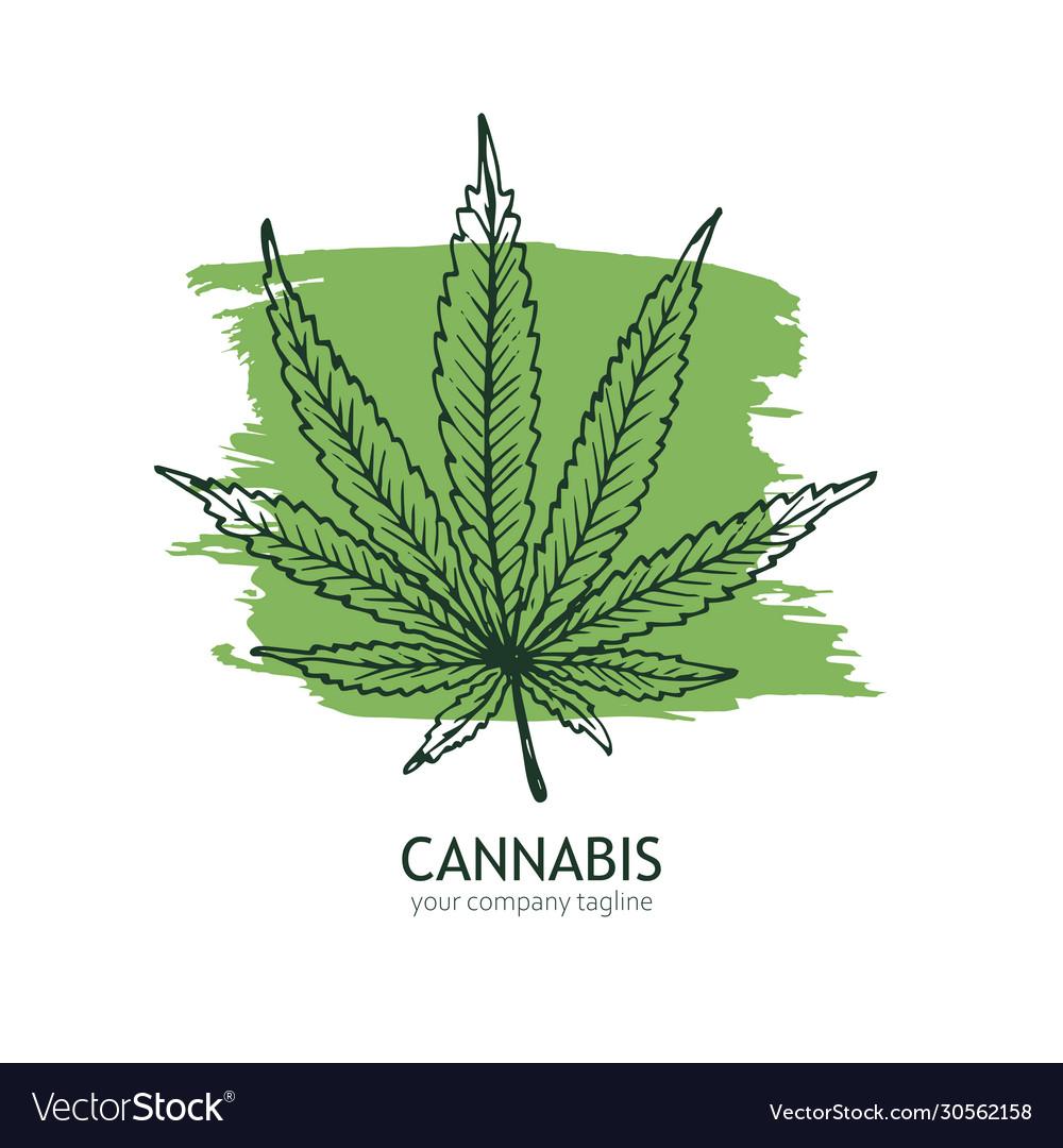 Cannabis logo template hand drawn hemp leaf