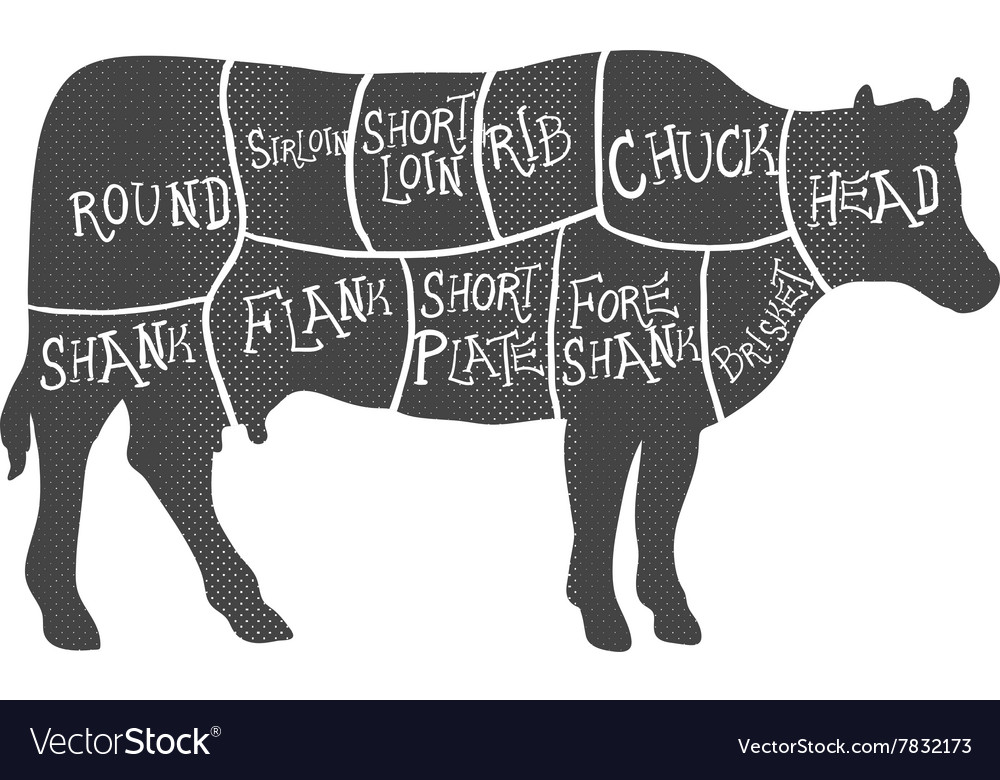 Beef Cuts Diagram Butchering Royalty Free Vector Image