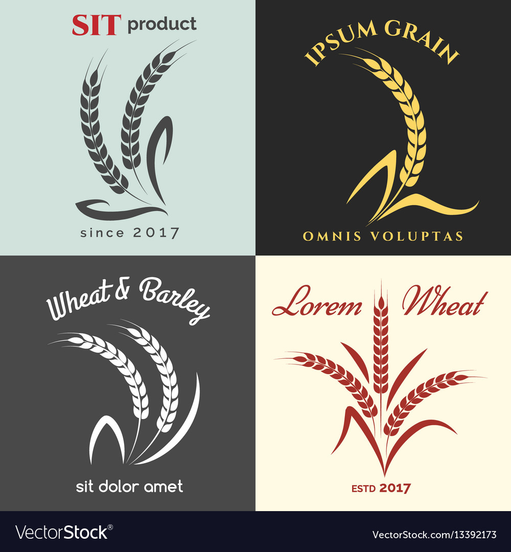 Ears of wheat logo set vector image