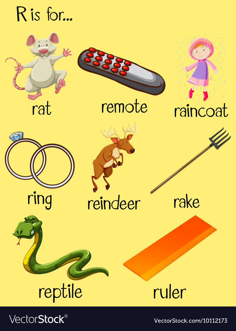Many Words Begin With Letter R Vector Image