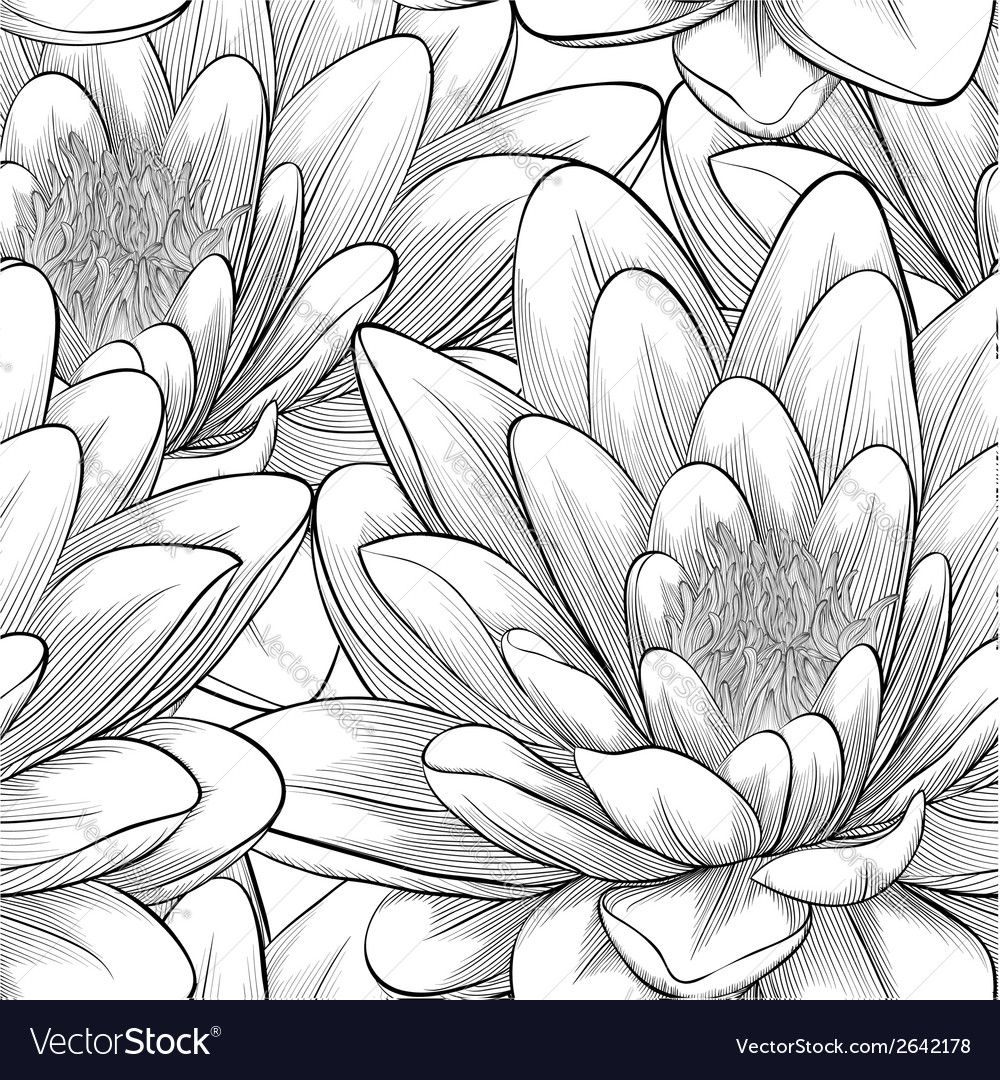 Black And White Seamless Pattern With Lotus Flower