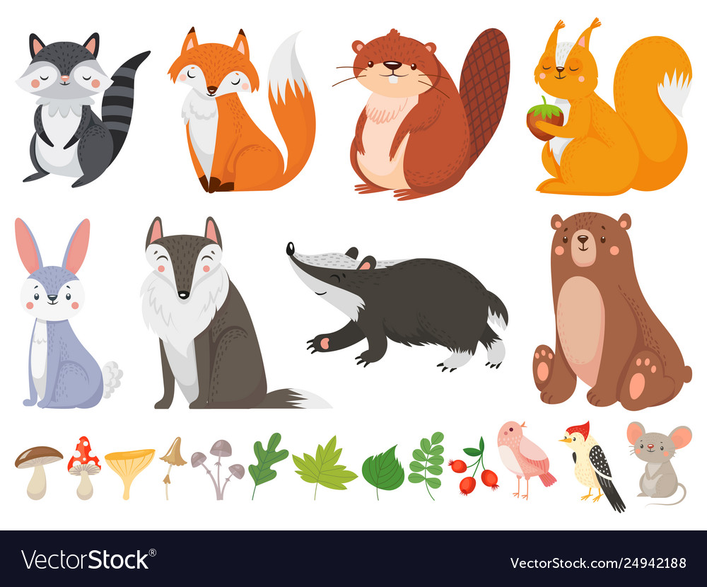 Funny wood animals wild forest animal happy