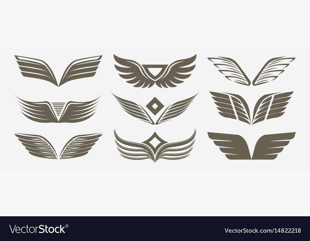 Wing isolated icon set vector image