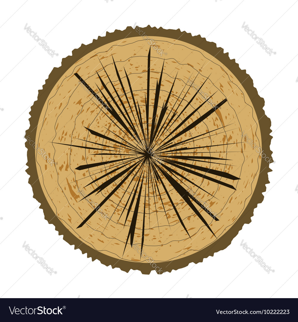 Tree Rings Background Wood Icon