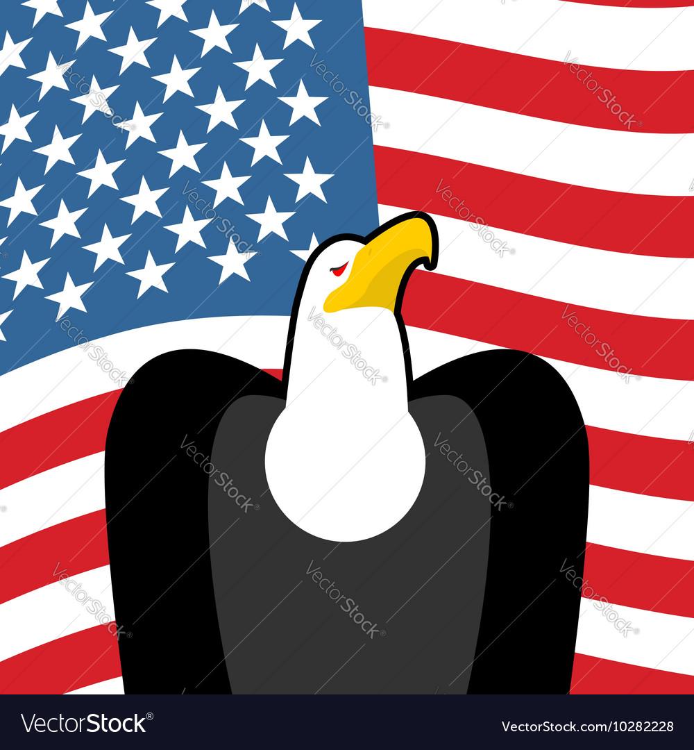 Bald Eagle Usa National Symbols Large Birds Of Vector Image