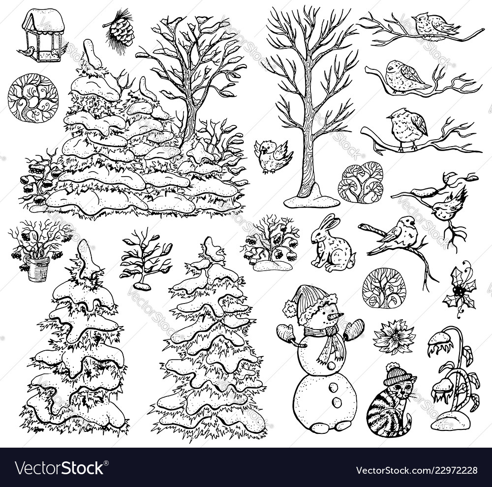 Design set with nature elements on white