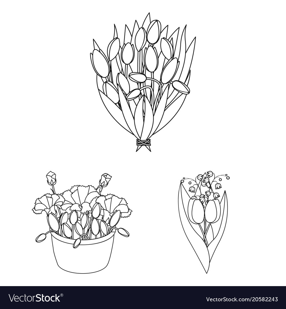 A bouquet of fresh flowers outline icons in set vector image izmirmasajfo