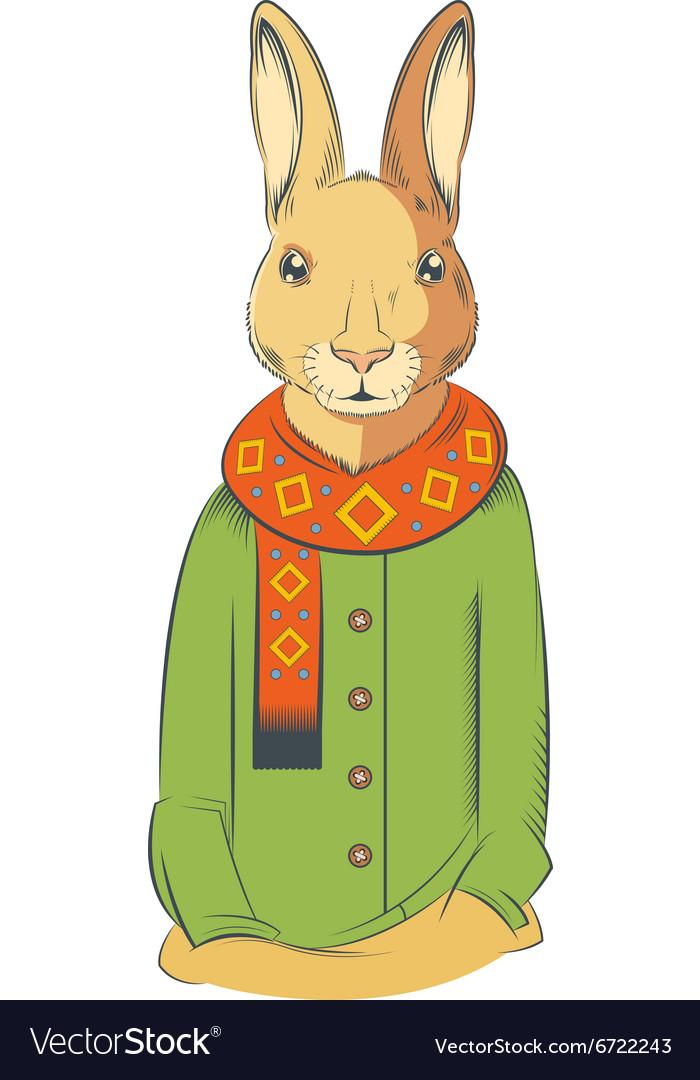 Colourful winter Hare