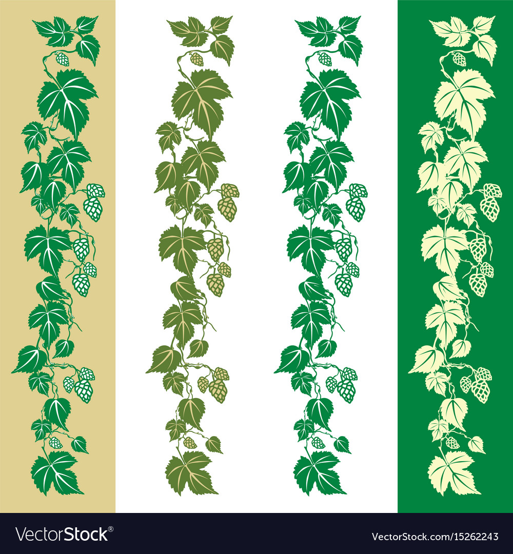 Hops plant vector image