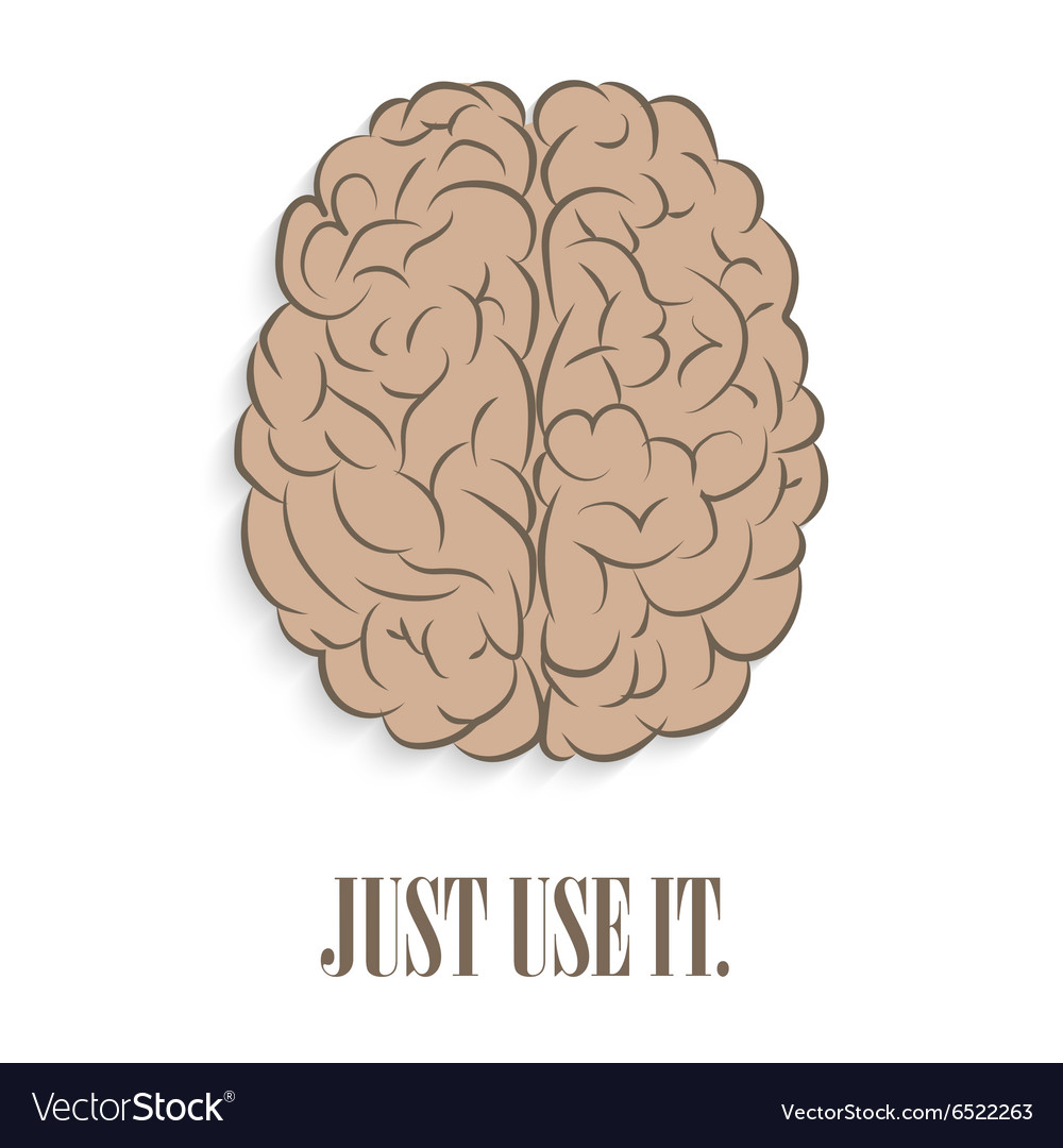 Brain front Just use it vector image