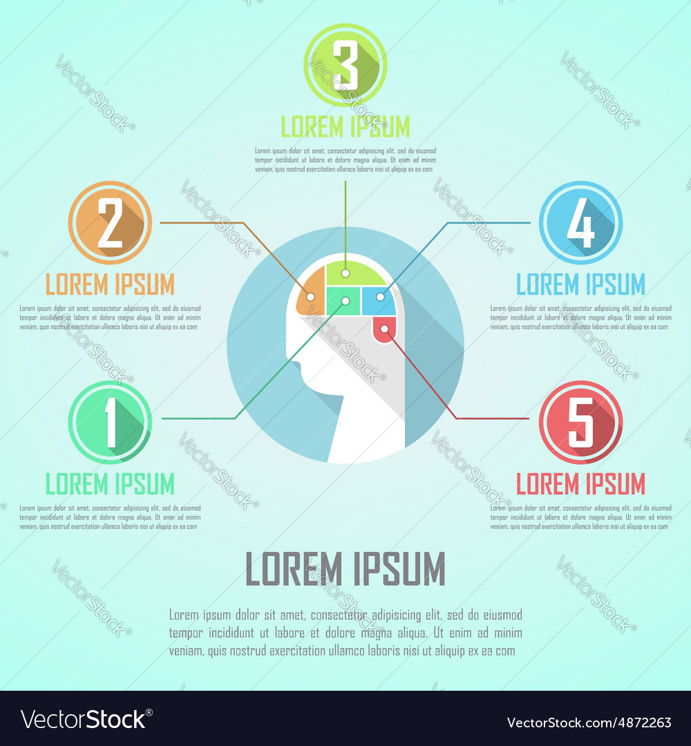 Human head and brain infographic design template vector image