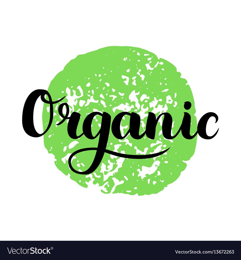 Organic brush lettering hand drawn word organic vector image