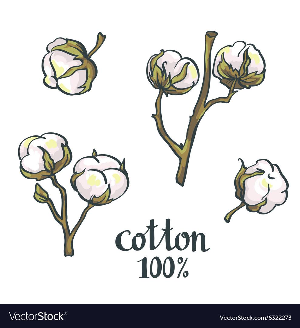 Natural Cotton set
