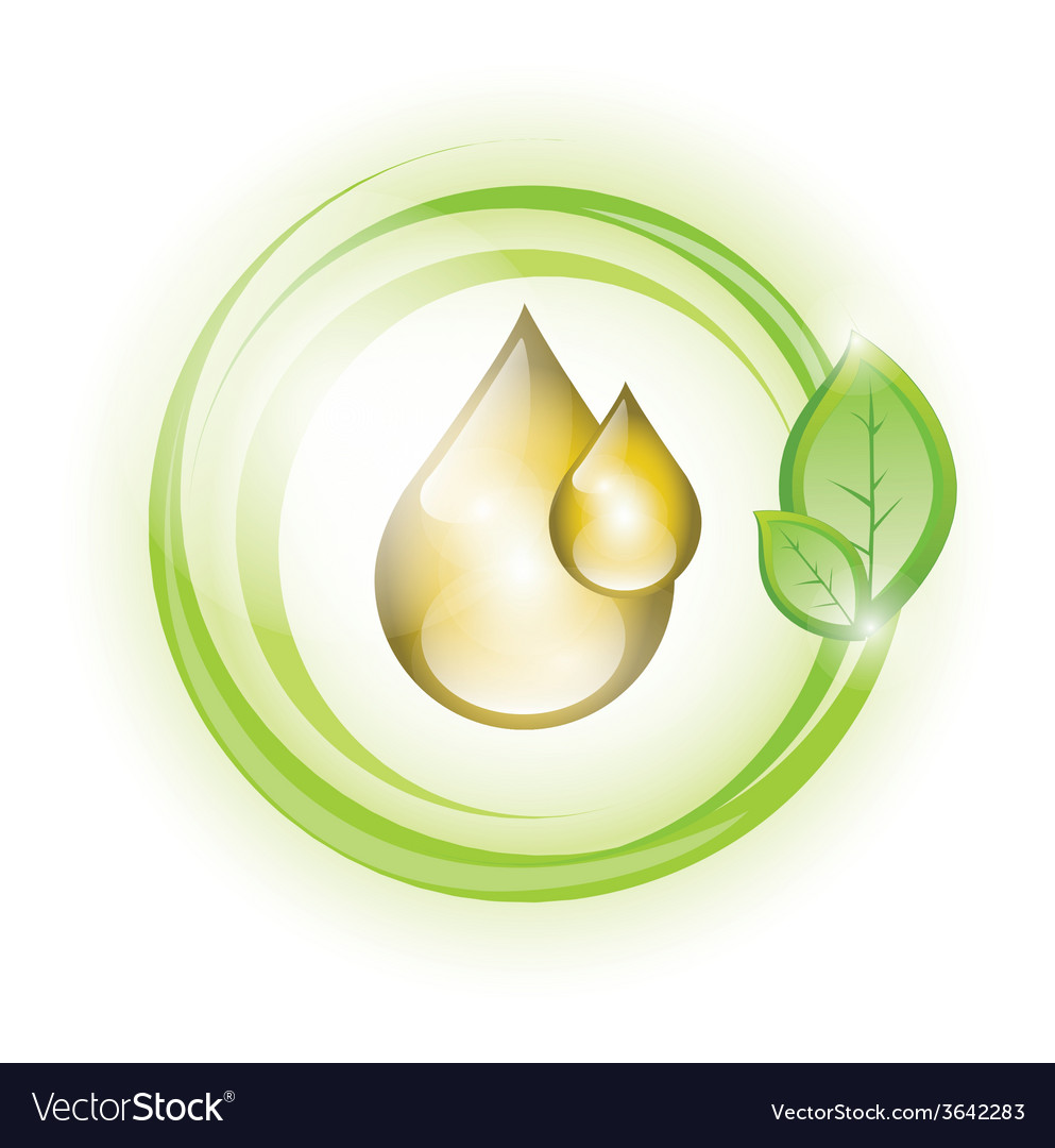 Golden yellow oil droplets in green circles