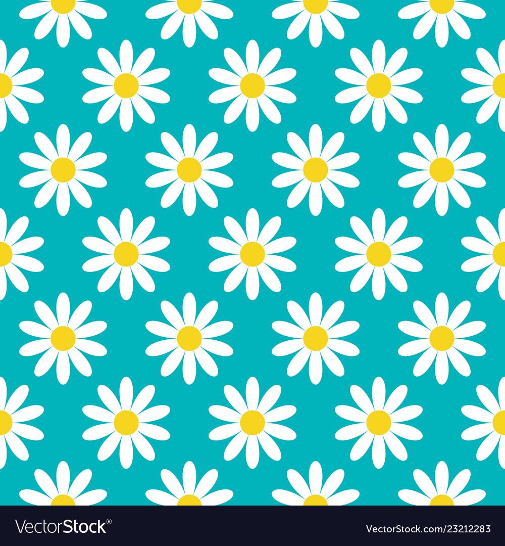 White daisy chamomile icon cute flower plant