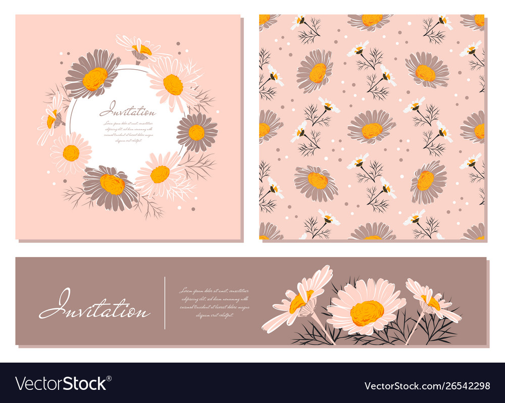 Flowers cards set chamomile background daisy
