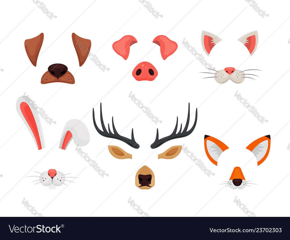 Animal faces set with ears and noses isolated on