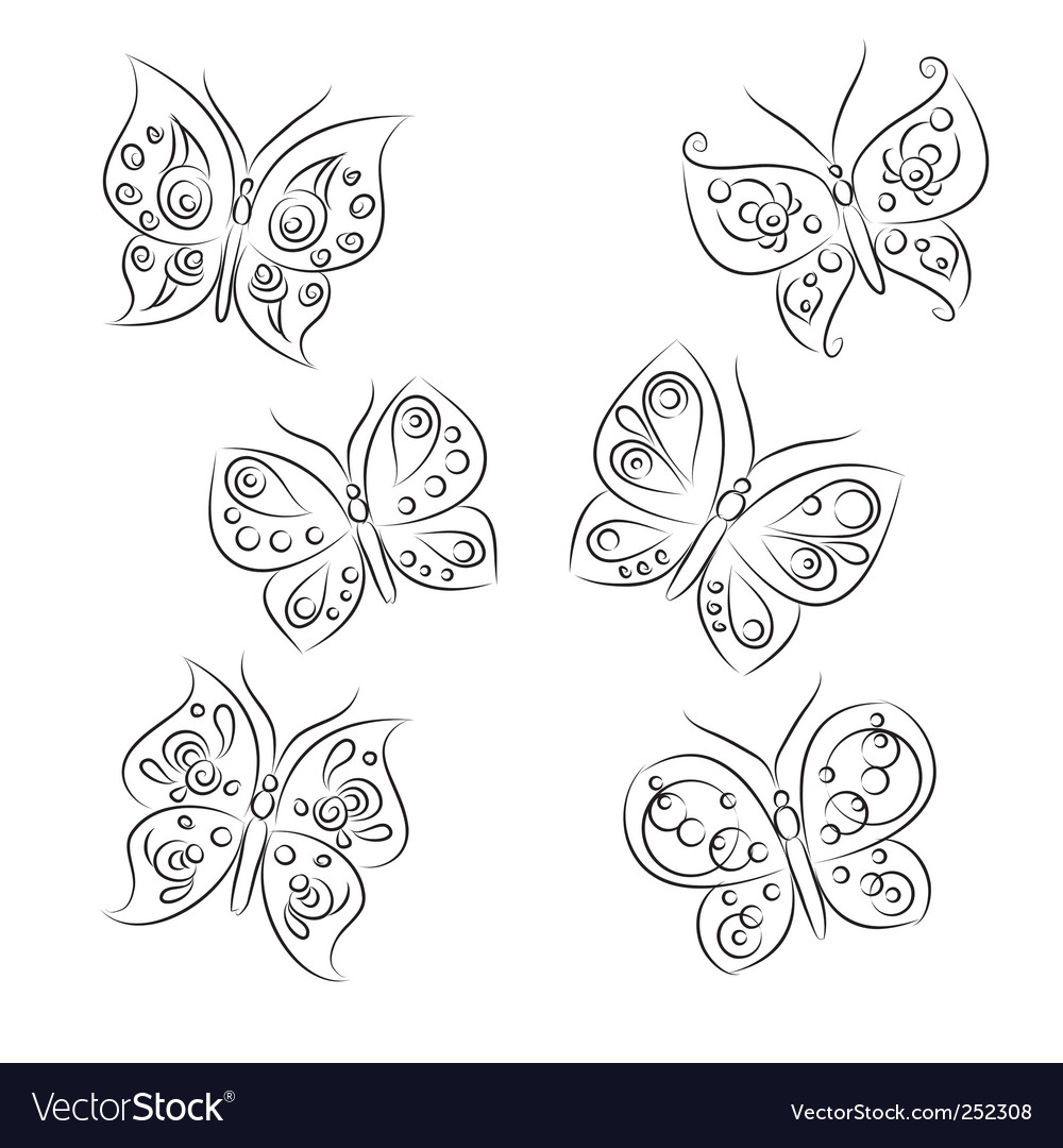Butterfly sketch vector image