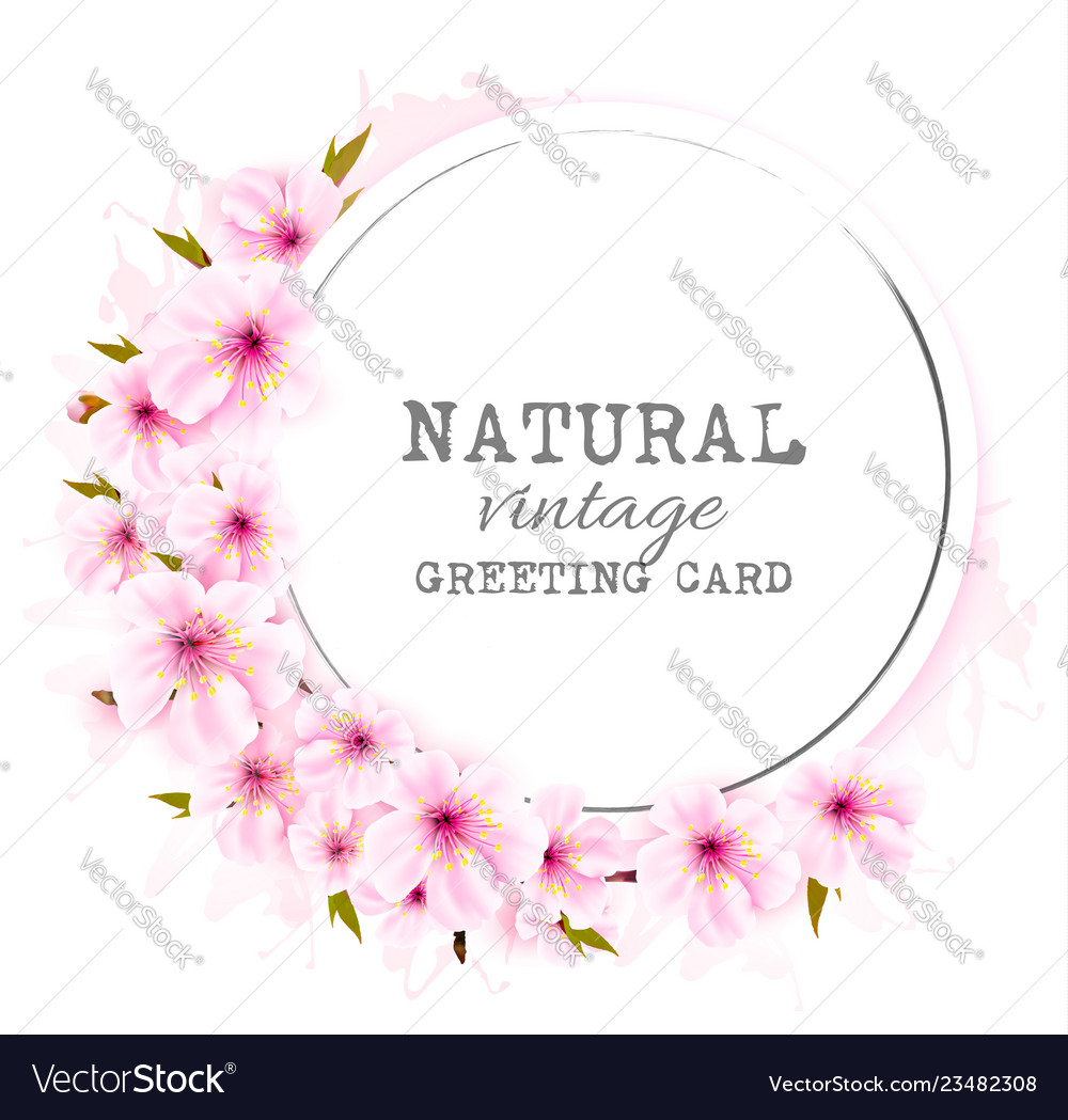 Spring background with a pink blooming sakura