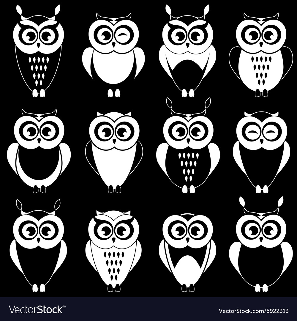 Set of cute black and white owls