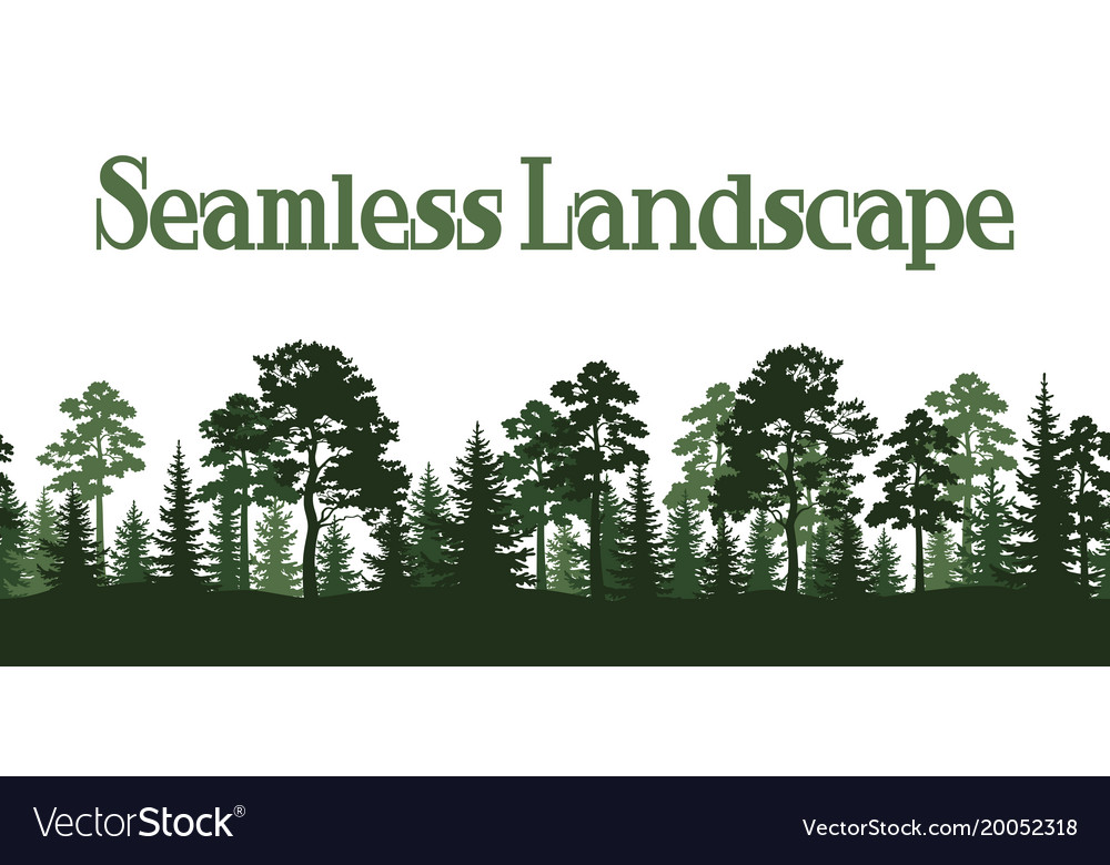 Seamless summer forest silhouettes vector image