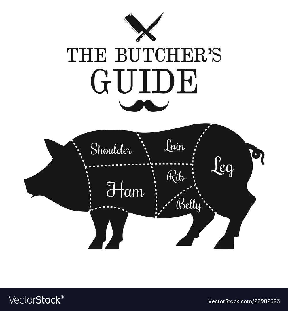 pork meat cut lines diagram poster guide for vector 22902323 pork meat cut lines diagram poster guide for vector image