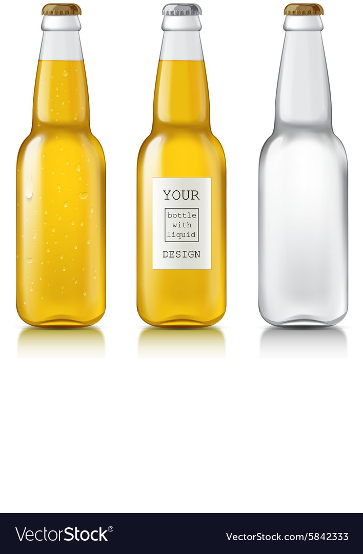 Set realistic bottles vector image