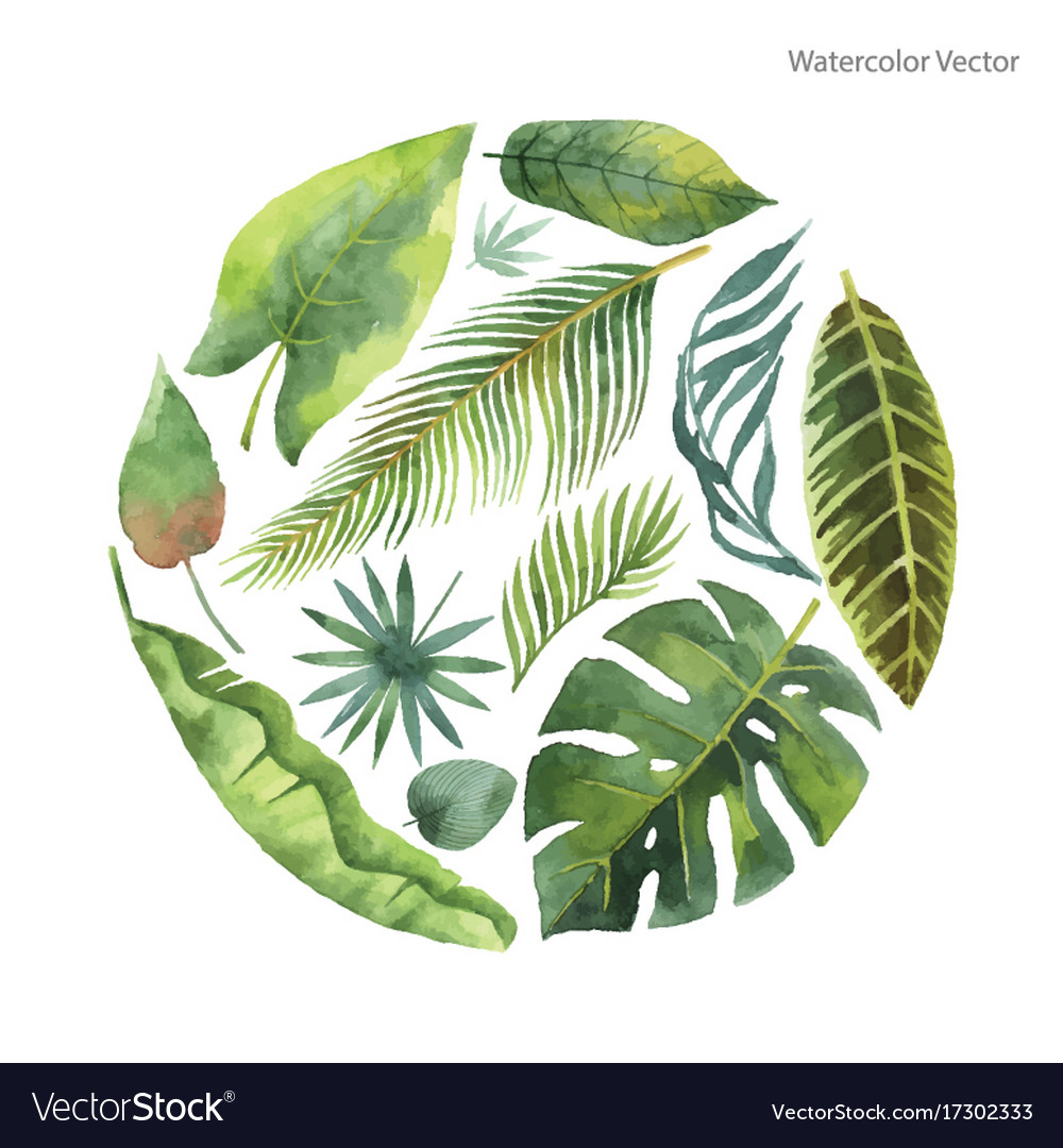 Watercolor card of tropical leaves and