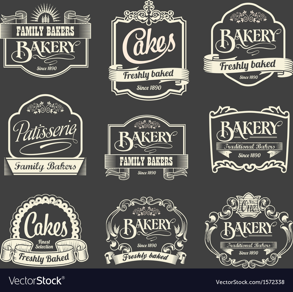 Calligraphic sign and label design set vector image