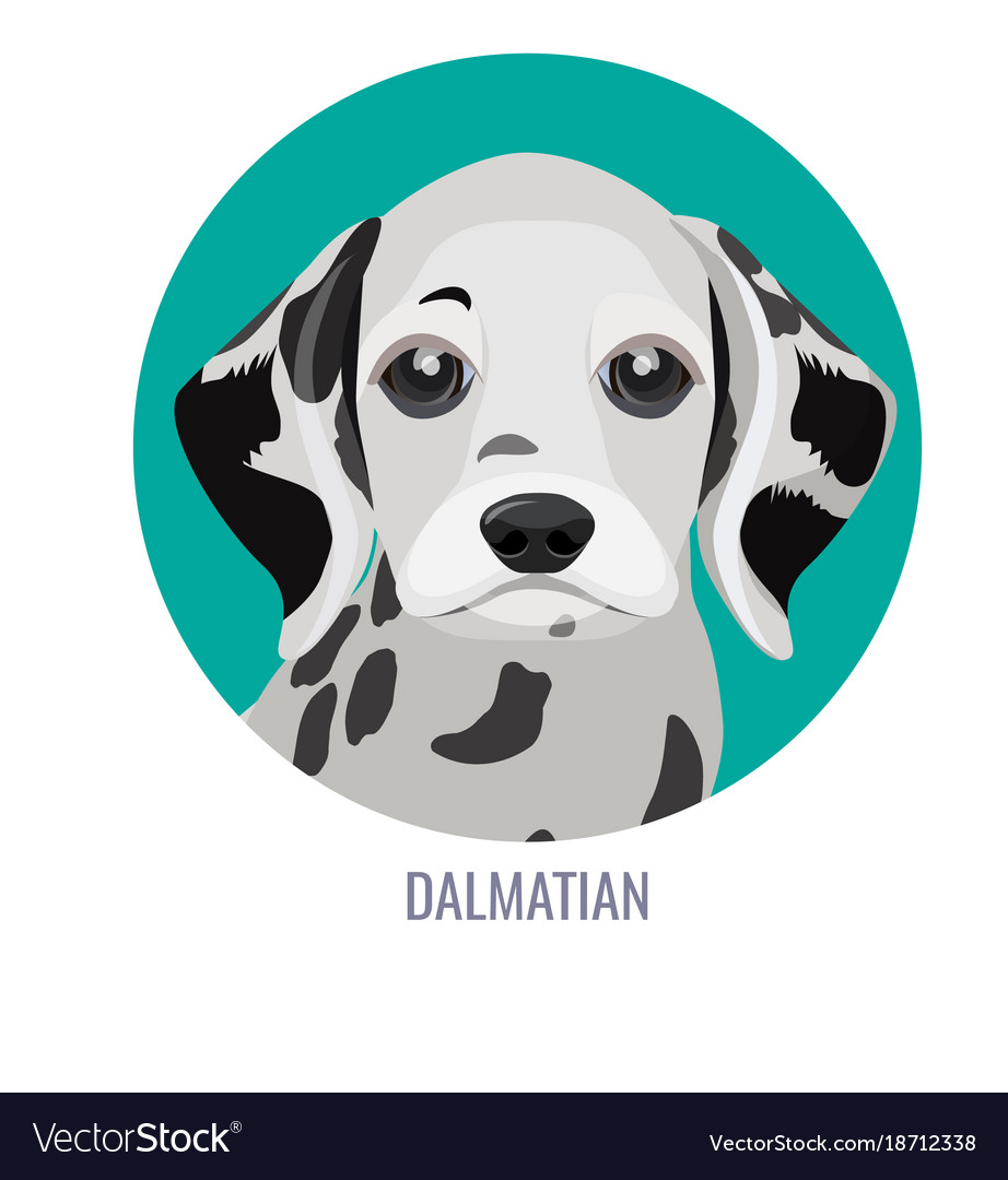 Dalmatian puppy in green circle