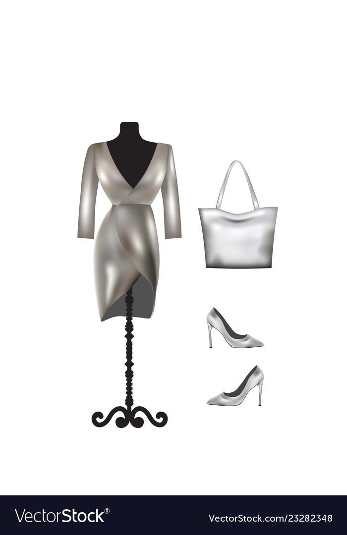 Set Dress Handbag And Shoes Vector Image