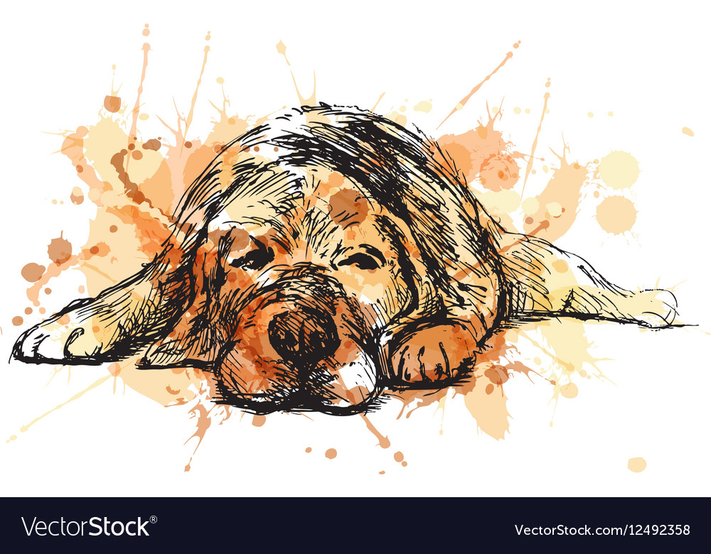 Colored hand sketch lying dog