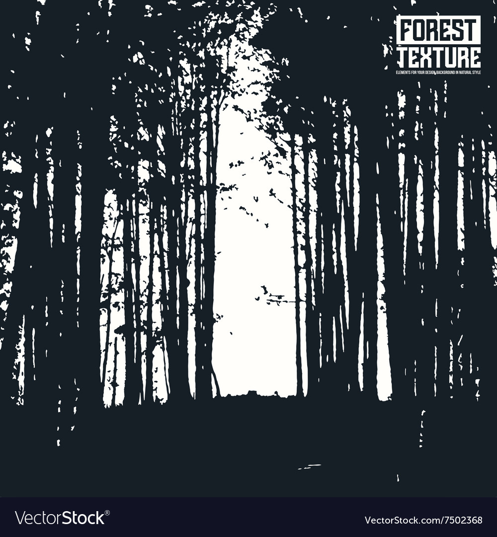 Opening wall forest texture vector image