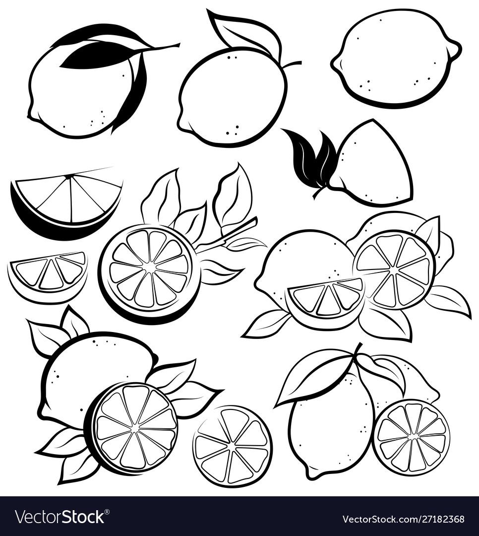 Set stylized lemons collection black and