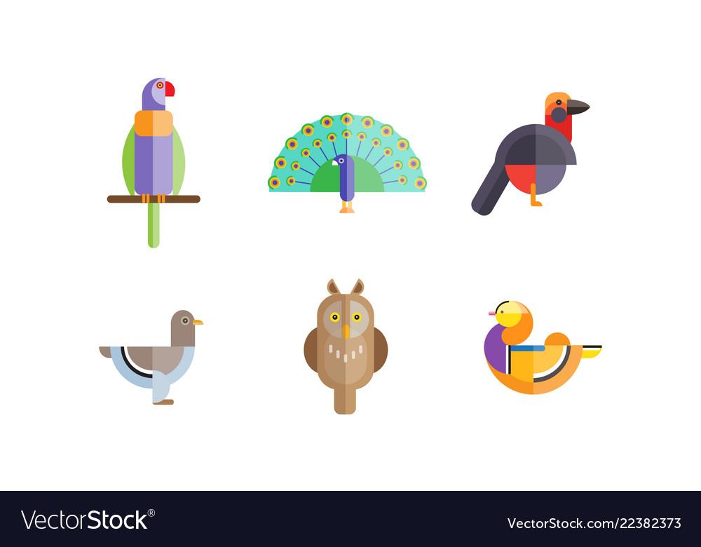 Birds set owl mandarin duck parrot dove
