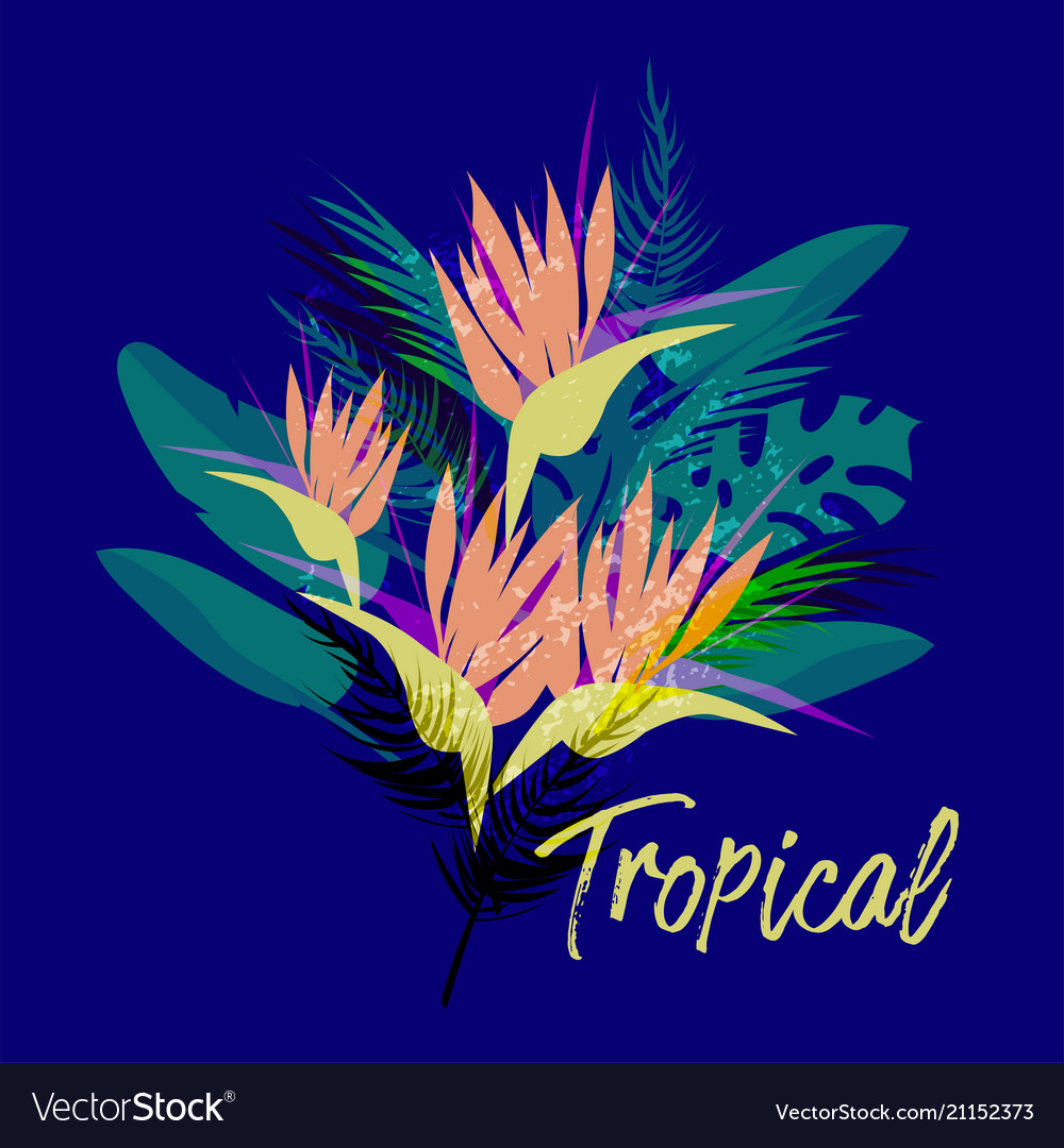 Tropical floral collage
