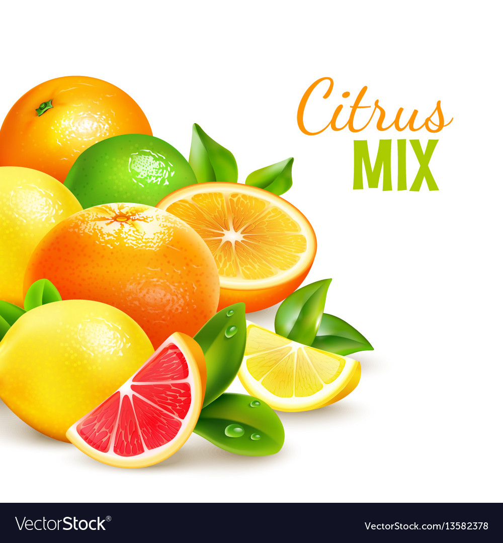 Citrus fruits mix realistic background poster vector image