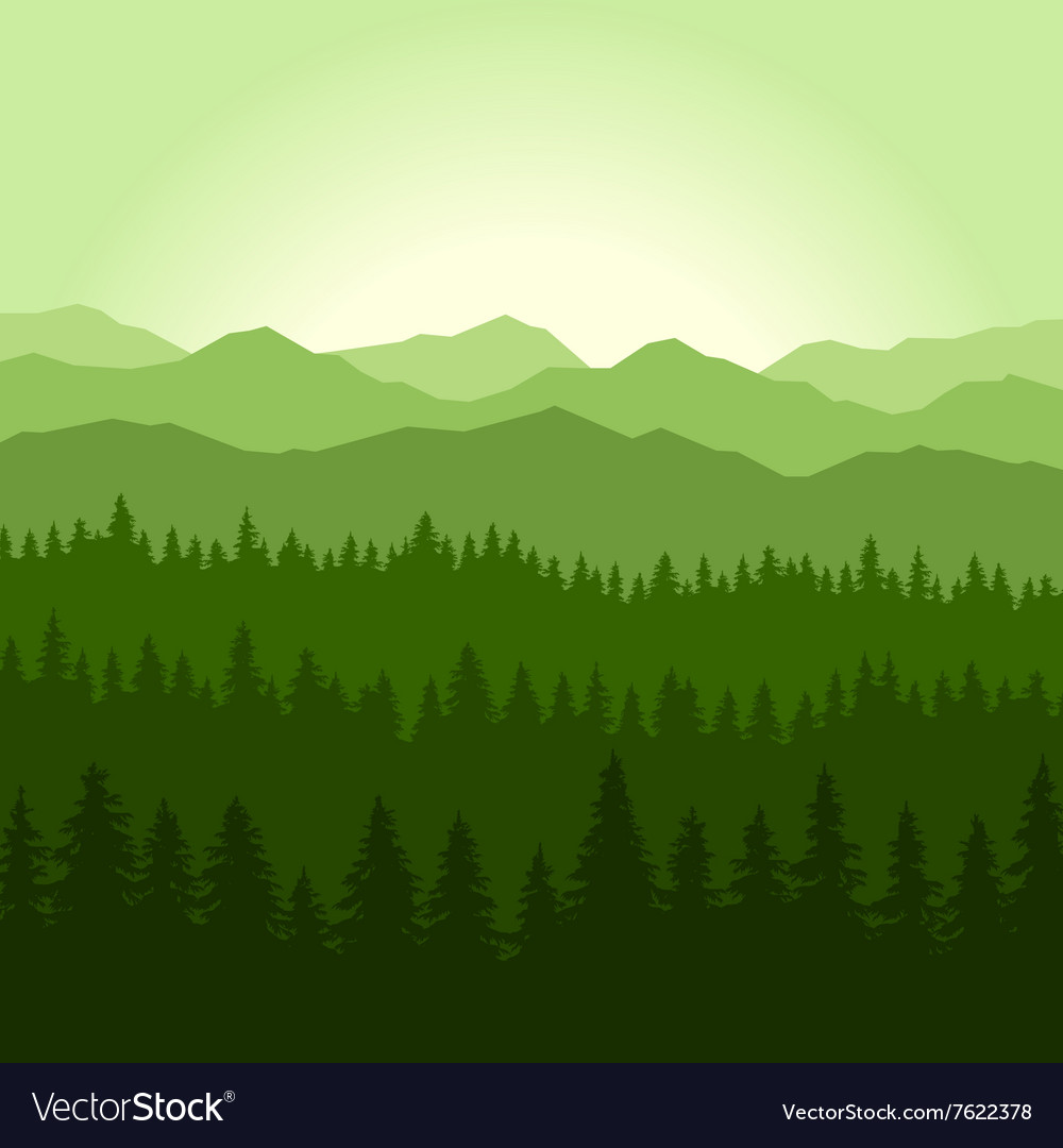 Green Fog Coniferous Forest and Mountains vector image