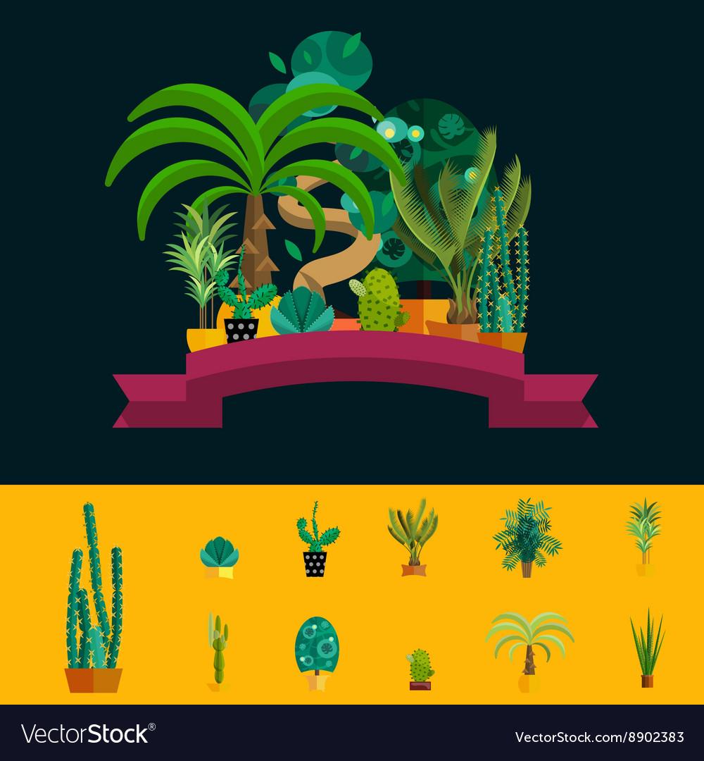 Desert flowers Exotic plant bush palm tree