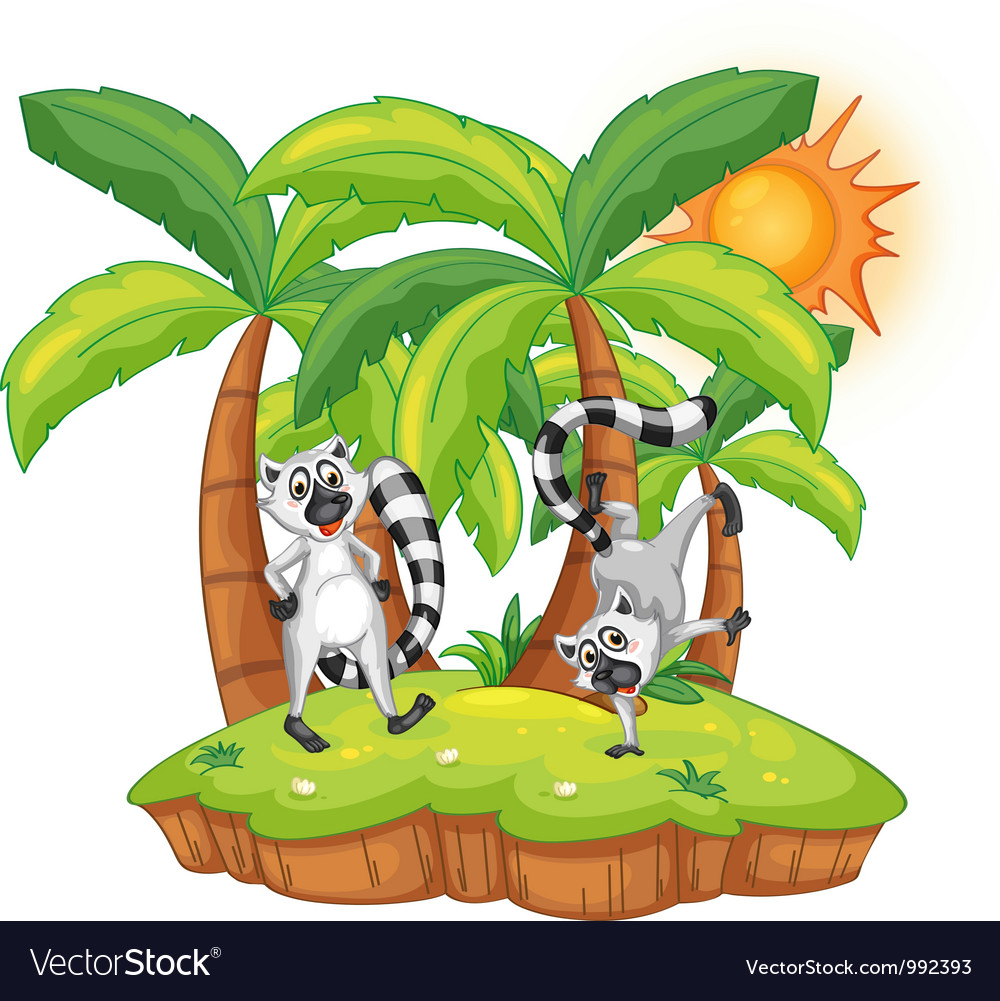 Cartoon Lemur island vector image