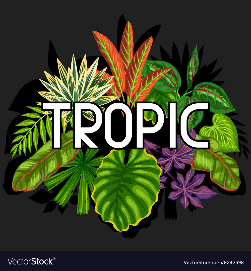 Background with stylized tropical plants and