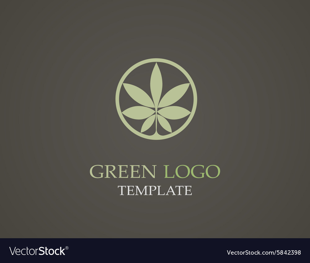 Eco green leaf logo template Green leaves loop