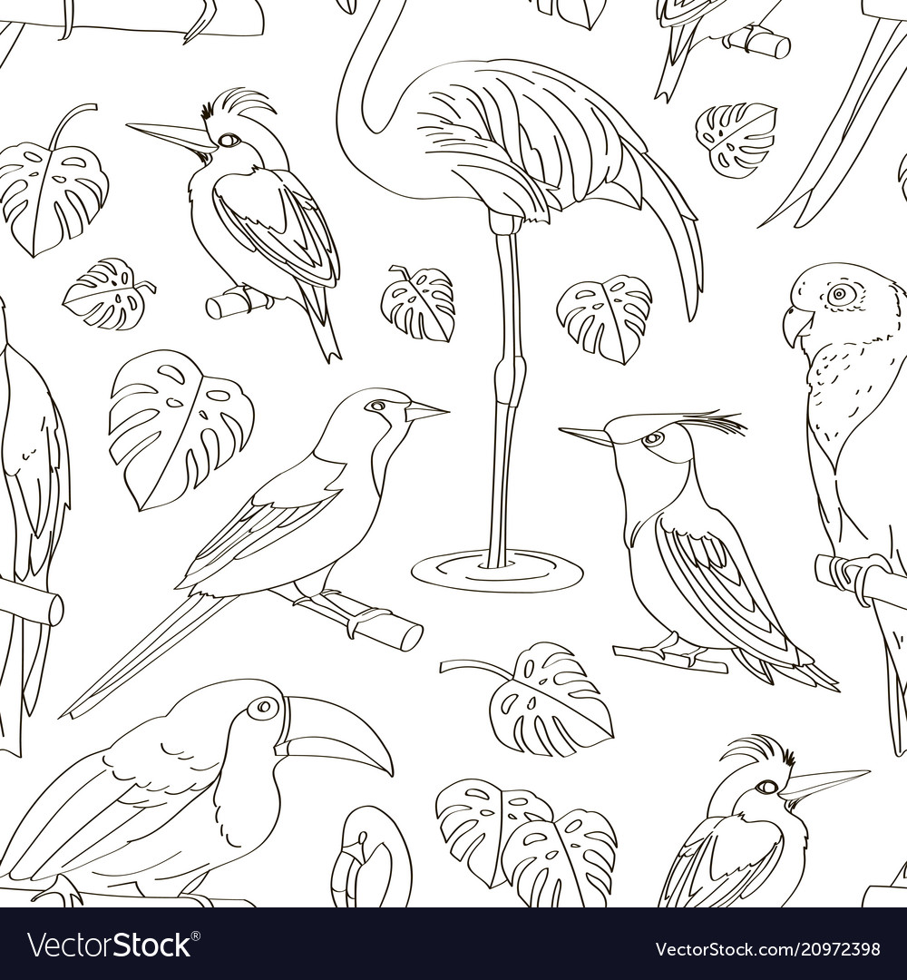 Exotic birds pattern