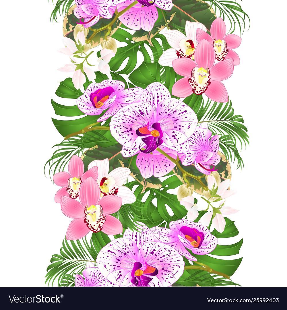 Border seamless background with tropical flowers