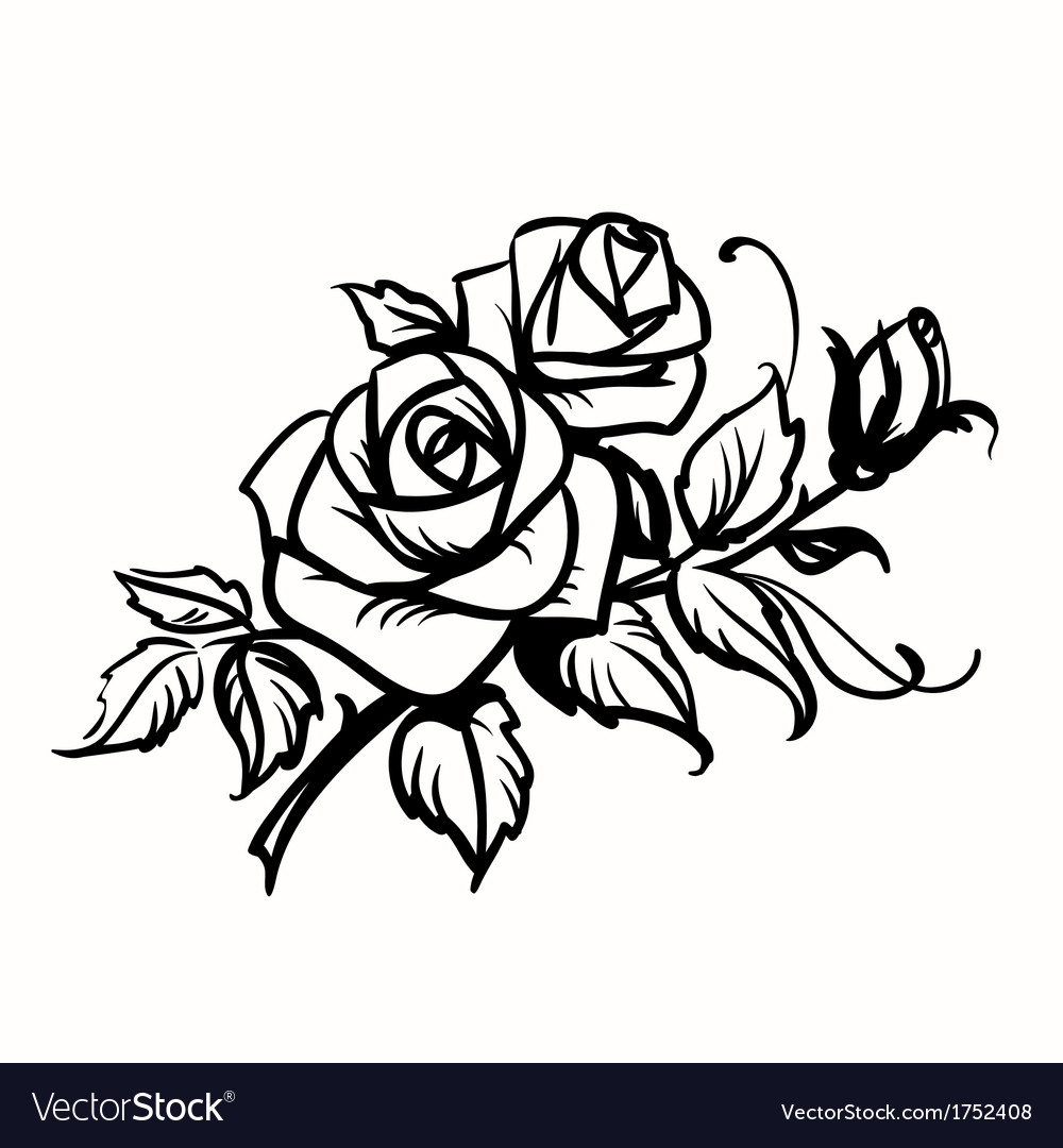 Rose Drawing Black And White