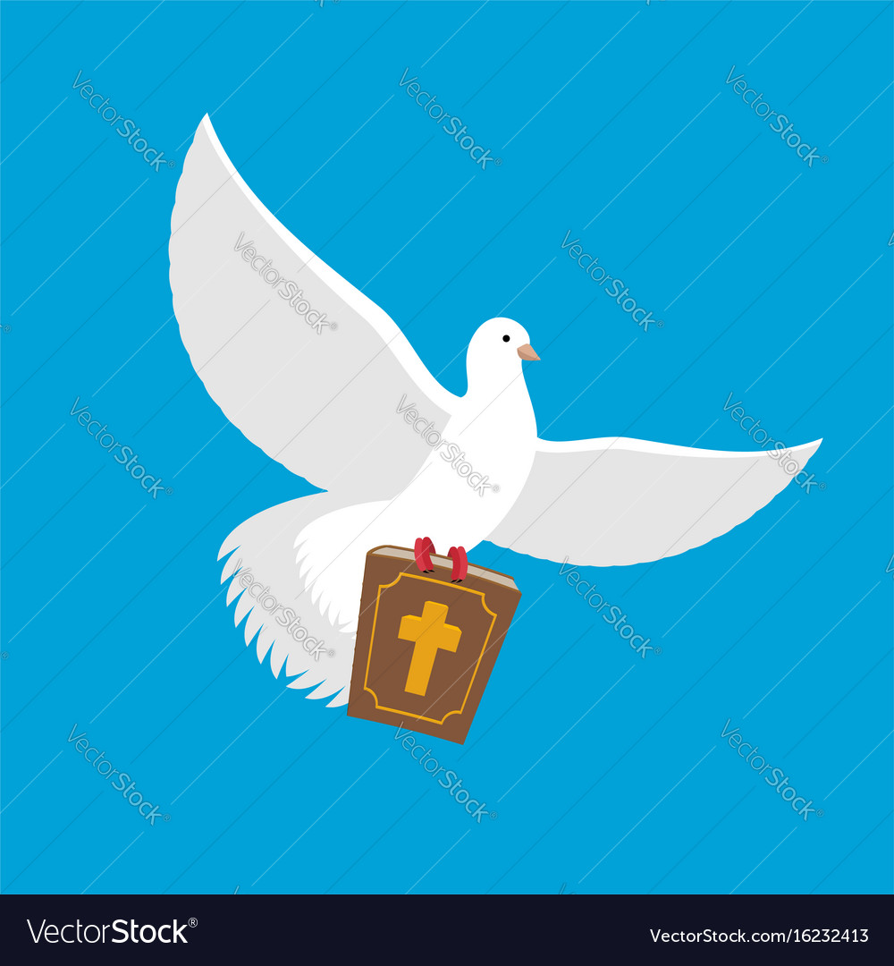 White Dove And Bible Pigeon And Holy Book Religion