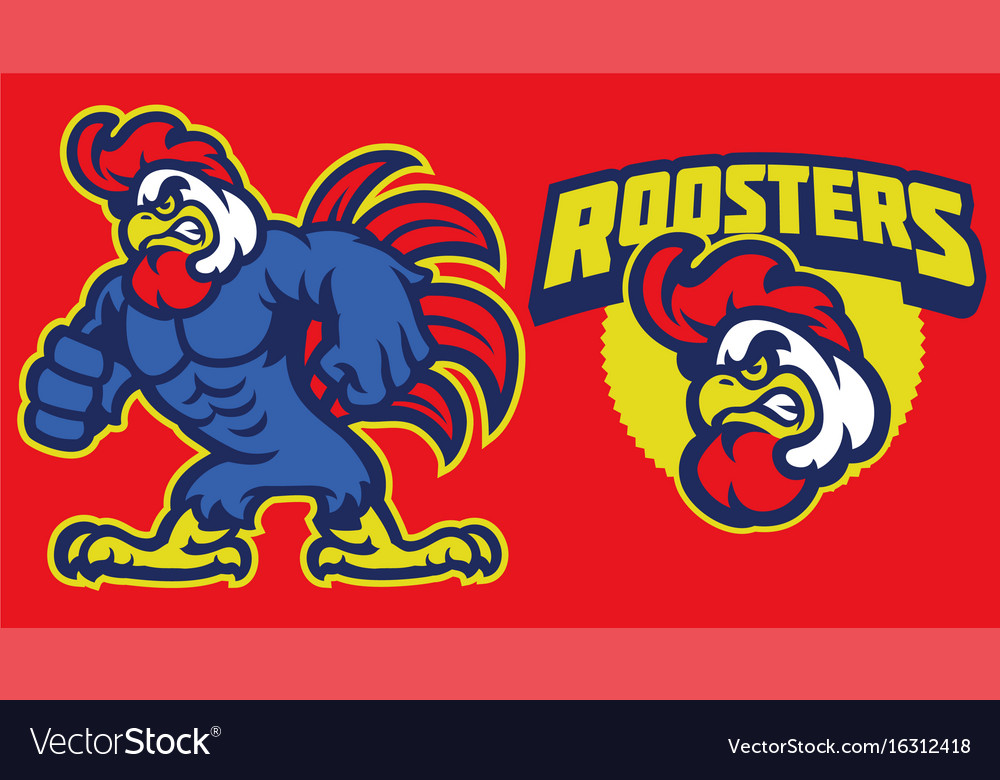 Angry chicken rooster