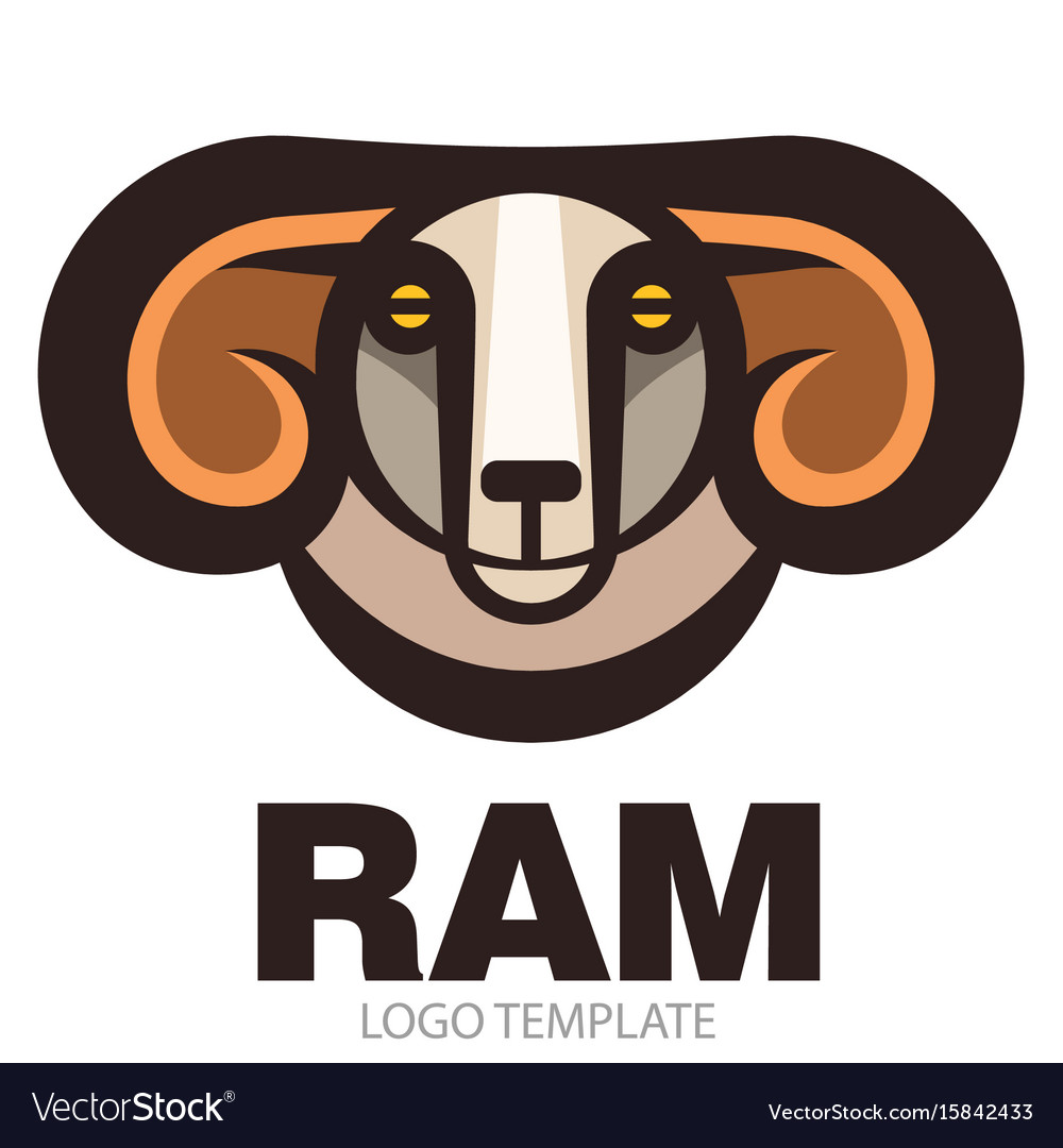 Head of horned ram vector image