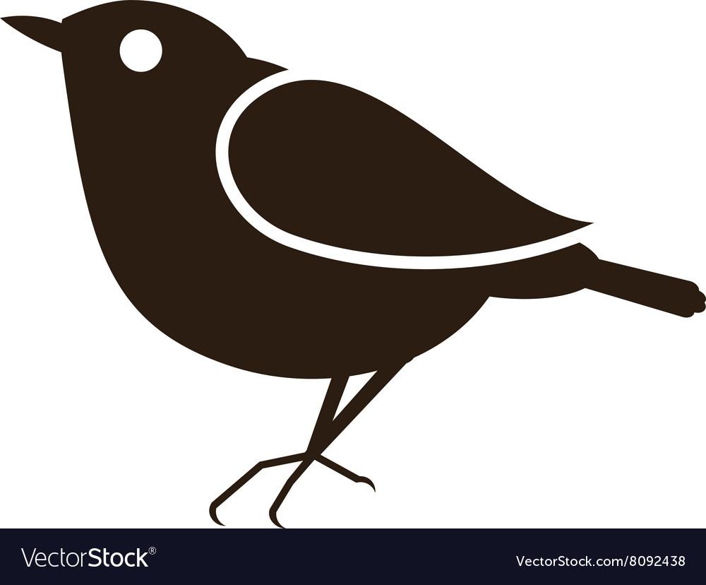 Blackbird-380x400